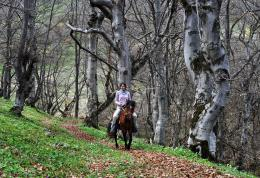 ride in to the forest, North Balkan Mountain region, Bulgaria