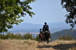 Horse Riding in Pirin Mountains